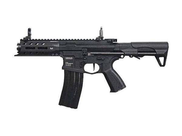 G&G 海外製電動ガン本体 ARP 556 (EGC-ARP-556-BNB) エアガン 18歳以上 サバゲー 銃