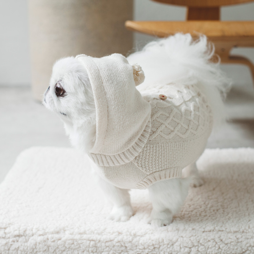 【犬 服 洋服】オーガニックニット L / LL