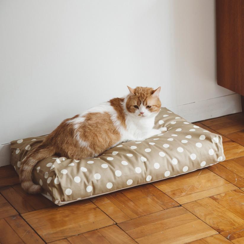 【猫 ベッド】ウォッシャブル スクエア ベッド Mサイズ 猫ねこ 猫用 ペット おしゃれ シンプル インテリア 洗濯 洗える