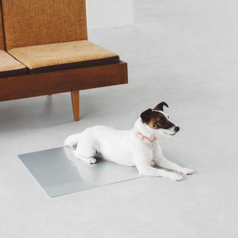 【犬 ベッド】シンプル クールベッド シルバーM