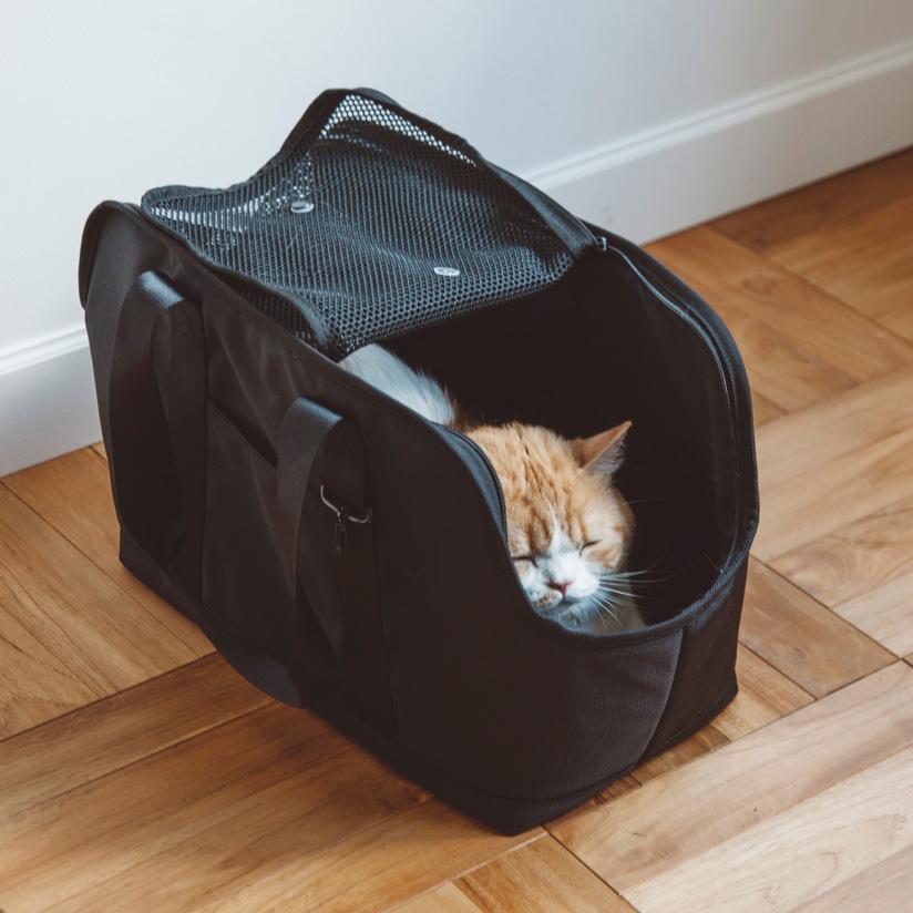 【猫 キャリーバッグ】バルコディ スクエア トート Mサイズねこ ネコ キャット キャリー キャリーバッグ バッグ かばん 通院 病院 電車 公共機関 車 シンプル おしゃれ 日本製 日本 メッシュ 肩掛け トート トートバッグ 人気
