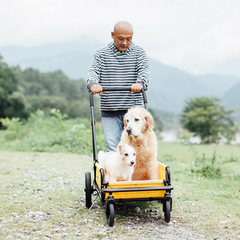 エアバギーフォードッグ キャリッジ ボディ(キャリッジ)単体Airbuggy for dog Carriage エアバギー 犬 カート 大型