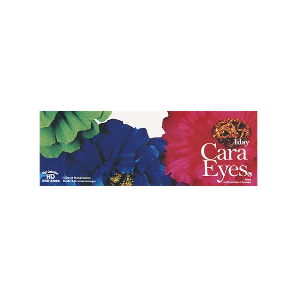 【送料無料】ワンデーキャラアイ 1day caraeyes 1日使い捨て 6箱 サークル レンズ 30枚入 ブラウン ヘーゼル グレー 3色 PNT!