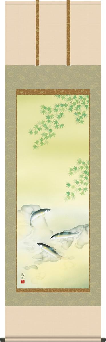 夏掛け 掛け軸 楓に鮎 依田流石 尺五 本表装 正絹 床の間 花鳥画 モダン 掛軸[送料無料]