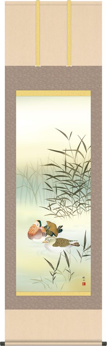 冬掛け 掛け軸 鴛鴦 浮田秋水 尺五 本表装 床の間 花鳥画 モダン 掛軸[送料無料]