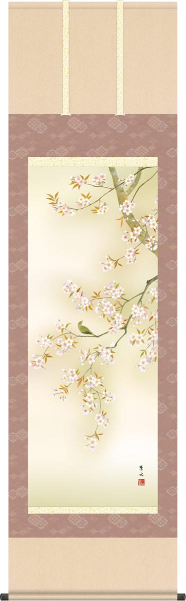 春の掛け軸 桜花に小鳥 緒方葉水 尺五 本表装 床の間 花鳥画 モダン 掛軸[送料無料]