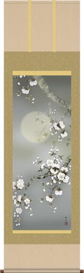 掛け軸-夜桜/緒方葉水(尺五 桐箱 緞子)花鳥画掛軸 [送料無料]