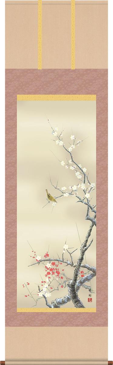 掛け軸-紅白梅に鶯/園田峰彩(尺五 桐箱)花鳥画掛軸 [送料無料]