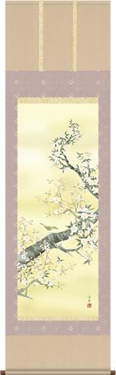 掛け軸-桜花/井川洋光(尺五 桐箱 緞子)花鳥画掛軸 [送料無料]