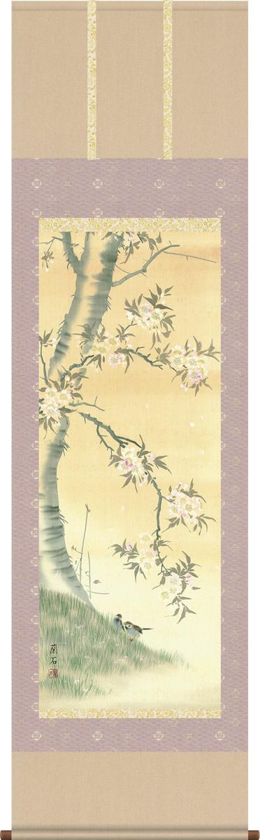 掛軸 掛け軸-桜花/高見蘭石 花鳥画掛軸送料無料(尺五 桐箱 緞子)