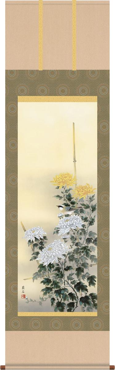 掛け軸 掛軸-流麗菊花/高見 蘭石(尺五 桐箱)和室、床の間に飾る モダンに掛物を吊るす [送料無料]