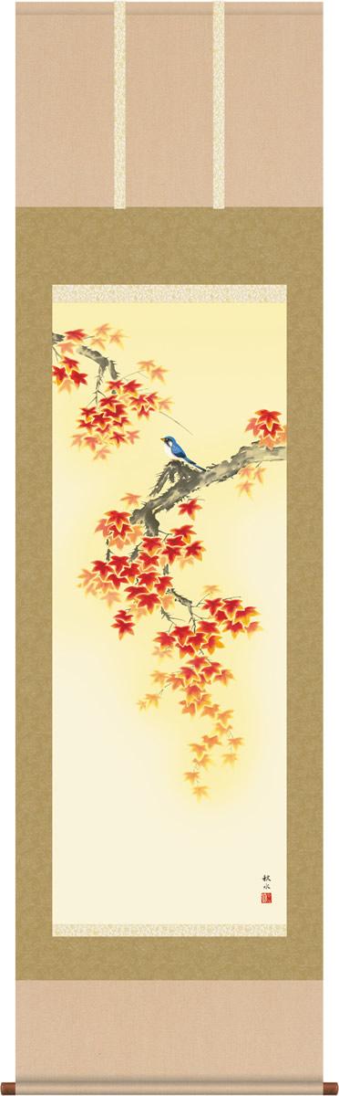 掛け軸 掛軸-紅葉に小鳥/浮田 秋水(尺五 桐箱)和室、床の間に飾る モダンに掛物を吊るす