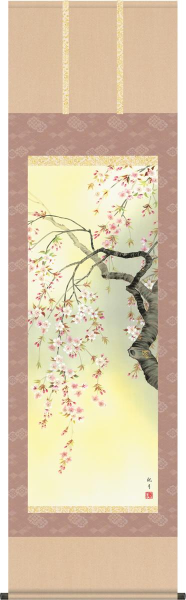 掛軸 掛け軸-桜花爛漫/森山観月 花鳥画掛軸送料無料(尺五・桐箱・風鎮付き・緞子)春爛漫の花鳥画掛け軸 モダンに掛物を吊るす