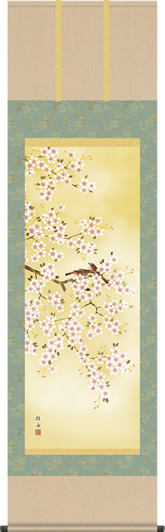 掛け軸-「春」桜花/長江桂舟(尺五 桐箱 緞子)花鳥画掛軸 [送料無料]