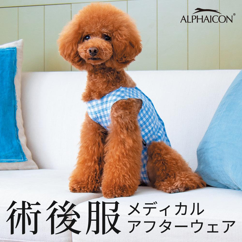 犬服 新品未使用正規品 アルファアイコン 術後服 術後着 避妊 手術 ALPHAICON メディカルアフターウェア ご予約品 スーパーセール 去勢