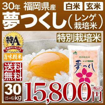 可 名入れ (5kg×6) 讃岐米 30kg (のし) 香川県 こしひかり 29年産の 内祝いやお返し、ギフトに熨斗 送料無料 (白米)