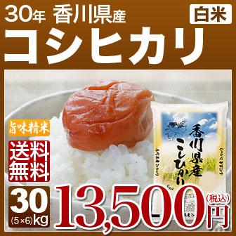 こしひかり 米 30kg (香川県 30年産)(5kg×6 白米) [お米 の ギフト 内祝い お祝い お返し に 熨斗(のし)名入れ 可]
