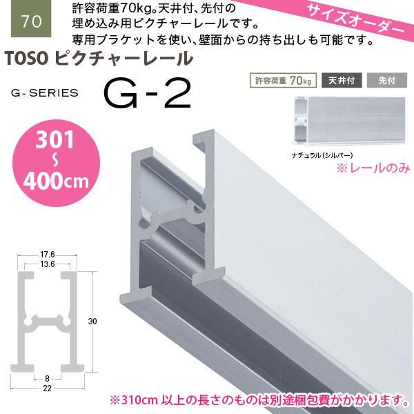 トーソー ピクチャーレール G-2 レールのみ 301~400cm オーダーサイズ 1本 天井付 先付 埋め込み用