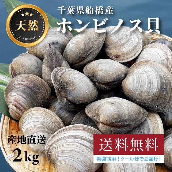 割引 ~新鮮なホンビノス貝をそのままお届け~ いつでも送料無料 2kg 送料無料 高評価 漁師直送 バーベキューに 千葉県船橋産ホンビノス貝 三番瀬 獲れたて新鮮 お酒のおつまみ