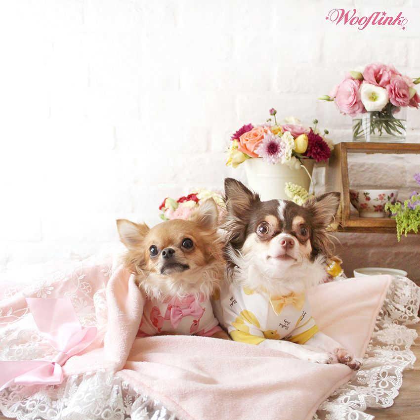 【送料無料】【WOOFLINK】ウーフリンク GOOD NIGHT BABY BED(ベッド/犬ベッド/クッション/カドラー/フリル/レース/寝袋式)
