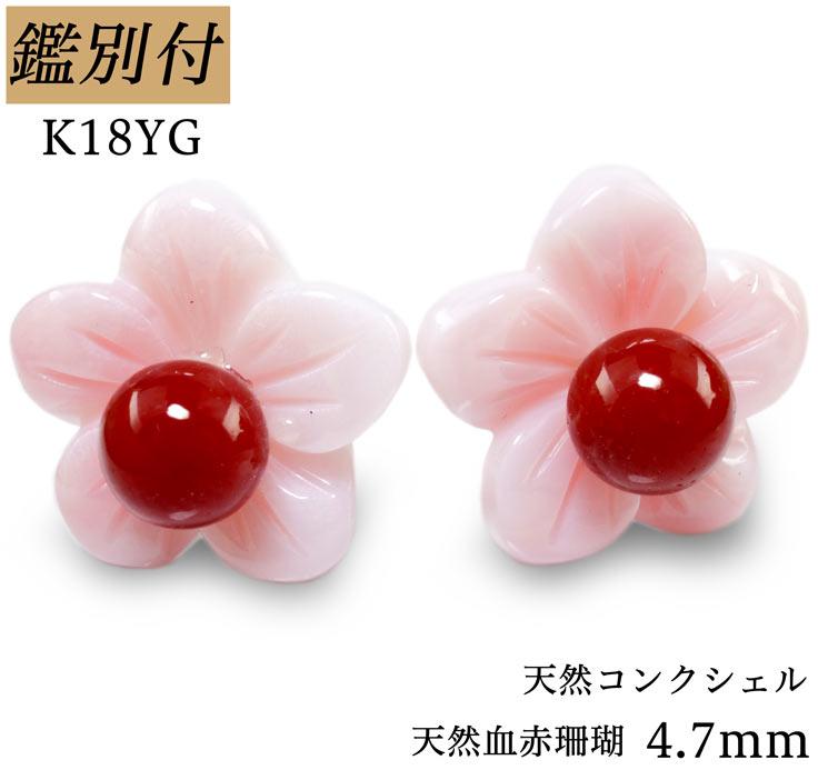 【鑑別付】K18YG 天然血赤珊瑚 4.7mm コンクシェル 日本産 18金イエローゴールド スタッドピアス 日本産本珊瑚 コーラル サンゴ coral ピアス レディース