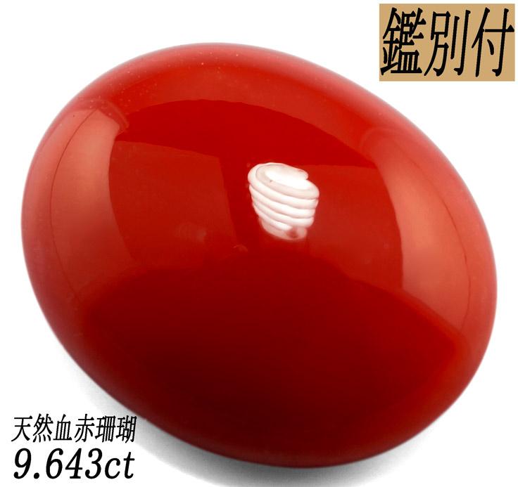 【鑑別付】天然 血赤珊瑚 9.643ct 日本産 コーラル ルース 原石<加工承ります>
