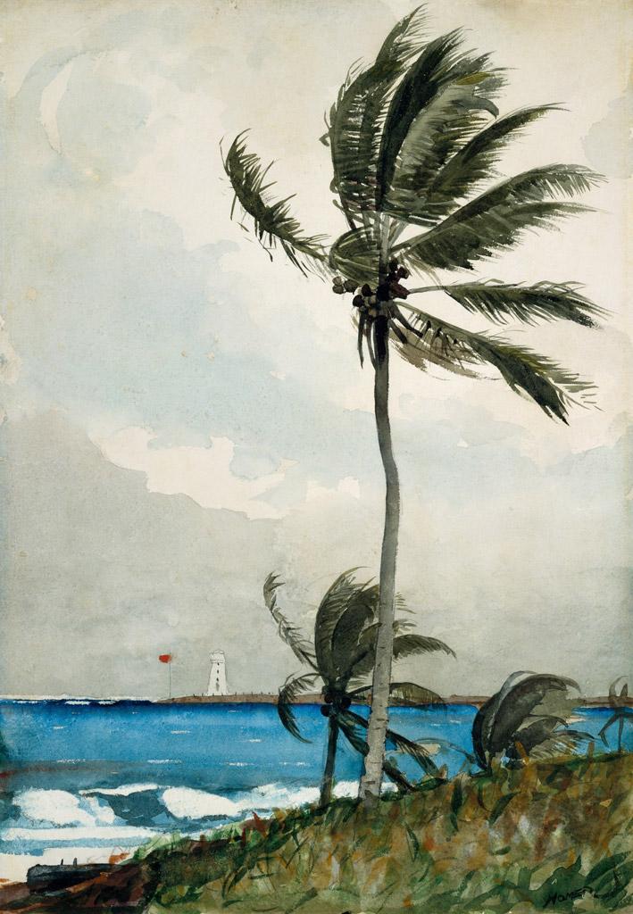 【送料無料】絵画 油彩画複製油絵複製画/ウィンスロー・ホーマー ナッソーのヤシの木 F10サイズ 686x611mm 【すぐに飾れる豪華額縁付 キャンバス】