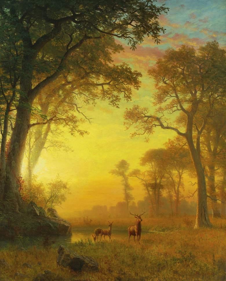 絵画 インテリア 額入り 壁掛け複製油絵アルバート・ビアスタット 森林の中の光 F15サイズ F15号 652x530mm 油彩画 複製画 選べる額縁 選べるサイズ