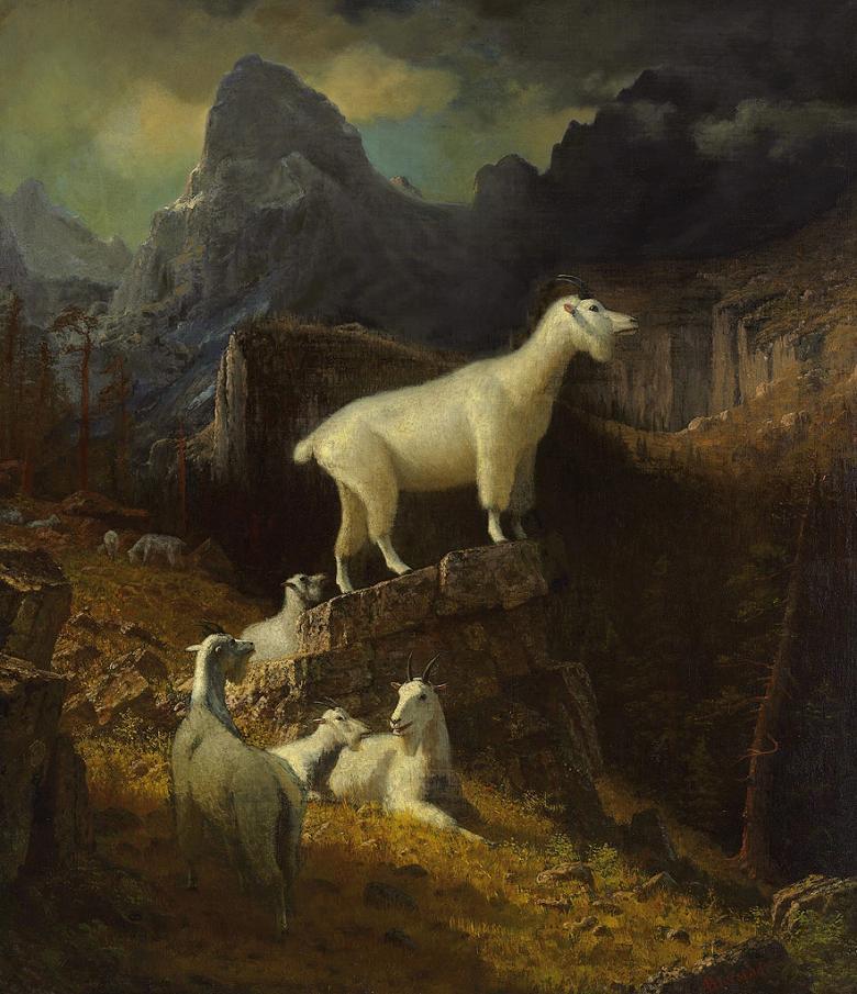 油絵 油彩画 絵画 複製画 アルバート・ビアスタット ロッキー山脈のヤギ F10サイズ F10号 530x455mm すぐに飾れる豪華額縁付きキャンバス