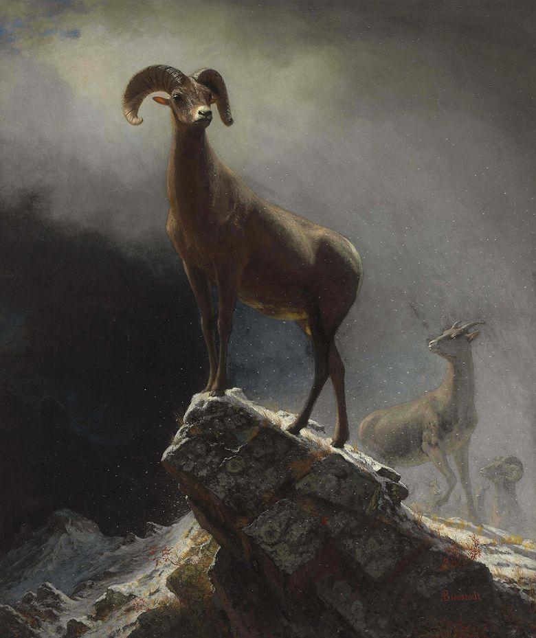 油絵 アルバート・ビアスタット ロッキー山脈のビッグホーン F12サイズ F12号 606x500mm 油彩画 絵画 複製画 選べる額縁 選べるサイズ