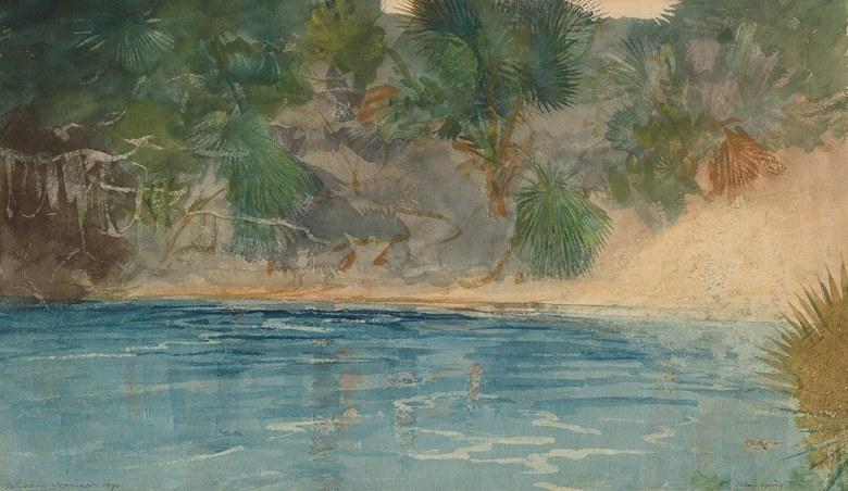 絵画 インテリア 額入り 壁掛け複製油絵ウィンスロー・ホーマー フロリダの青い泉 F20サイズ F20号 727x606mm 絵画 インテリア 額入り 壁掛け 油絵