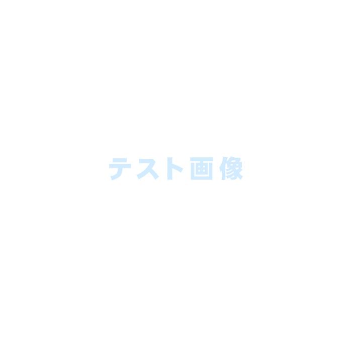 【テスト商品】ブラウス(この商品は購入できません)#春色 #長袖 #春物 #ブルー