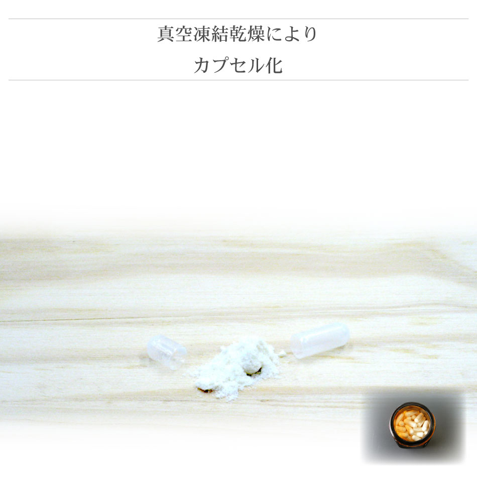 Traditional Royal Jelly (120 grains)