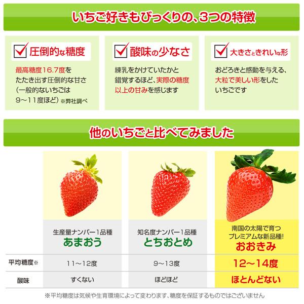 規格外 訳あり わけあり  380g以上(1粒あたり18~23g) いちご イチゴ 苺 高級 甘い おおきみ タルト ショートケーキ の材料にも フルーツ 果物 (順次発送予定)