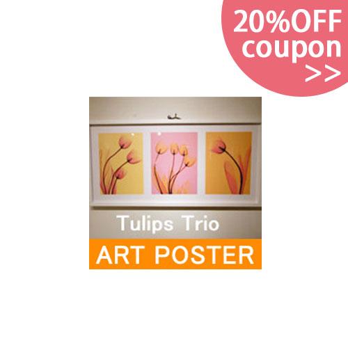 アートポスターTulips Trio チューリップ  おしゃれなインテリアの作り方 アウトドアリビングが気持ちいい
