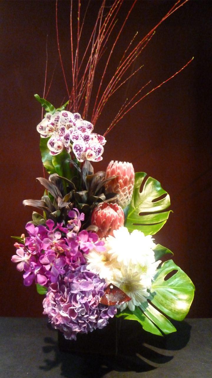 purple 蘭 プロテア