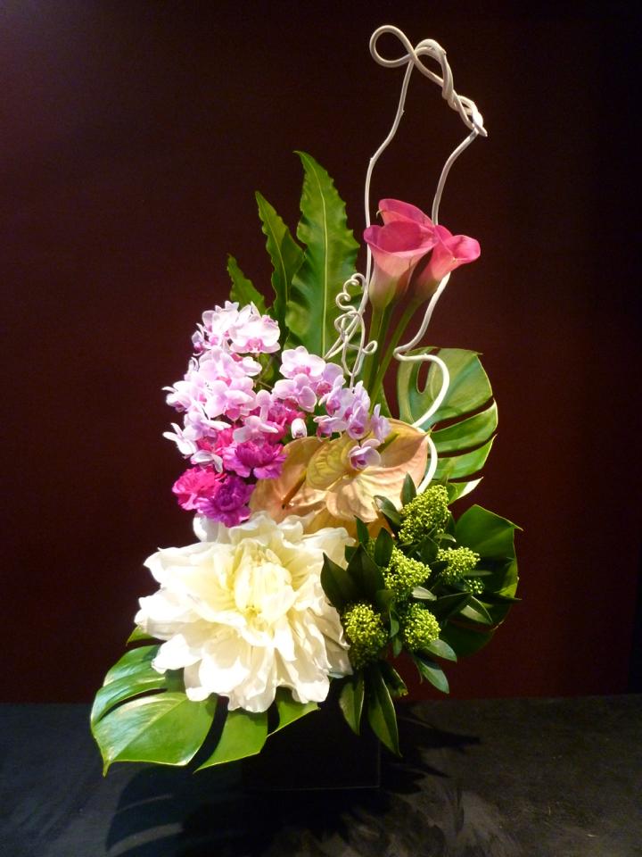母の日 珍しい花 ダリア 胡蝶蘭 ファレノプシス 白ダリア カラー スキミア