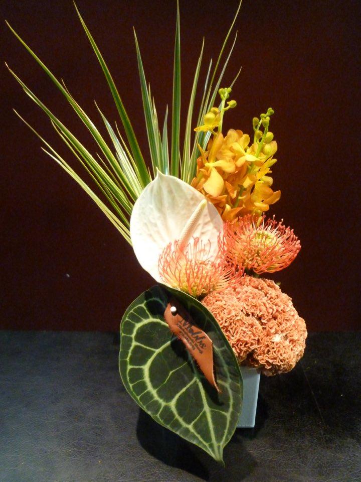 Orange Arrangement アレンジメント ピンクッション 休み お買い得品 シロシマウチワ アンスリューム モカラケイトウ ドラセナ