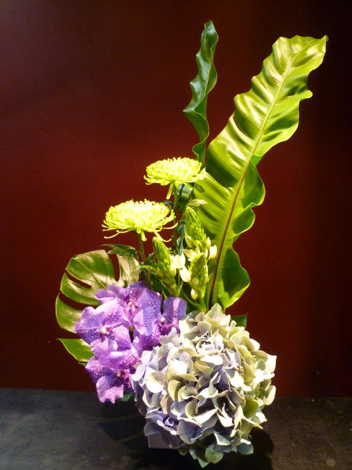 【アレンジメント】季節のアジサイ 紫陽花 蘭 バンダ オーニソガラム 菊 アナスタシア モンステラ タニワタリ