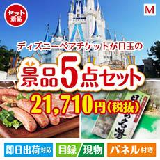 東京ディズニーリゾート1DAYパスポート ぺア 5点セットM、景品、二次会景品、目録、ゴルフコンペ、忘年会、新年会、ディズニーランド