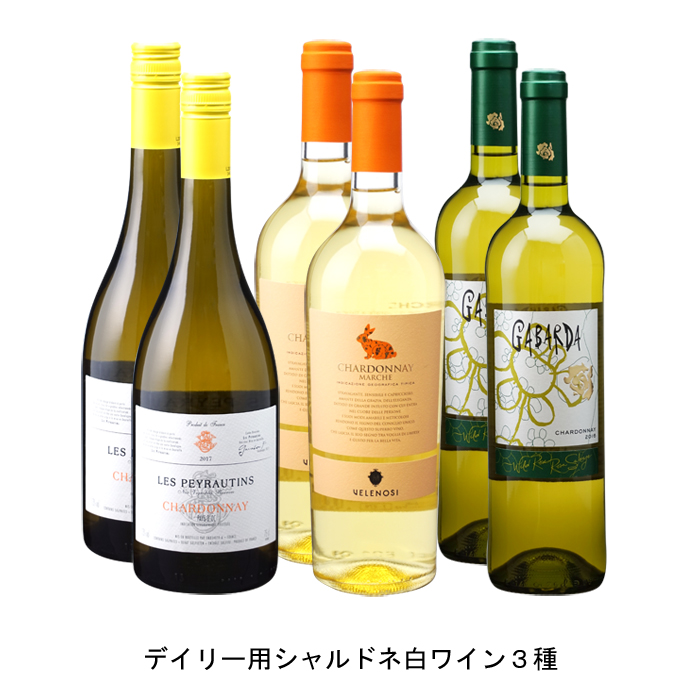 フランスワイン イタリアワイン スペインワイン 6本セット 当店限定販売 出群 各2本 デイリー用シャルドネ白ワイン3種