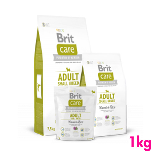 Brit ブリット 春の新作続々 ケア ラム アダルト S 1kg 新作 人気 ライス