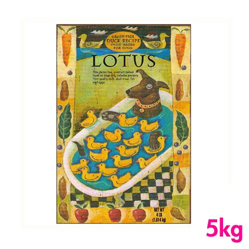 ロータス グレインフリー アダルト 成犬用  ダックレシピ(小粒) 5kg LOTUS 【犬用/ドッグフード/ドライフード/小型犬/中型犬/大型犬/成犬】