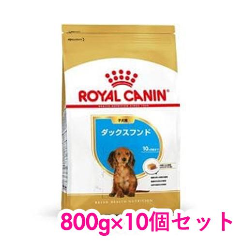 ロイヤルカナン ダックスフンド 子犬用 800g×10個セット