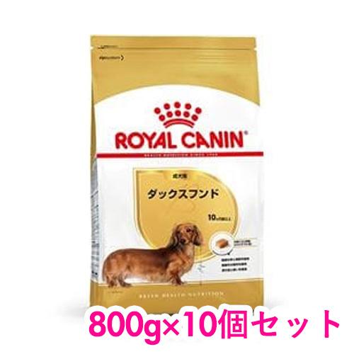 ロイヤルカナン ダックスフンド 成犬用 800g×10個セット