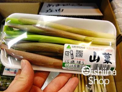 7000円以上送料無料 あまどころ〈アマドコロ〉1パック 50g~150g前後 ブランド品 超人気 専門店