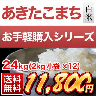 30年 愛知県産 あきたこまち 白米 24kg(2kg×12袋)【送料無料】