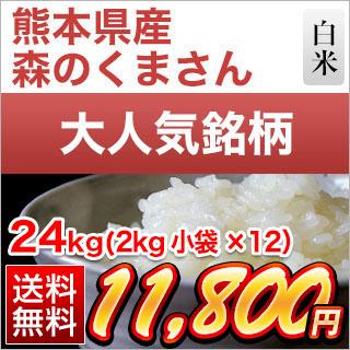 30年 熊本県産 森のくまさん 白米 24kg(2kg×12袋)
