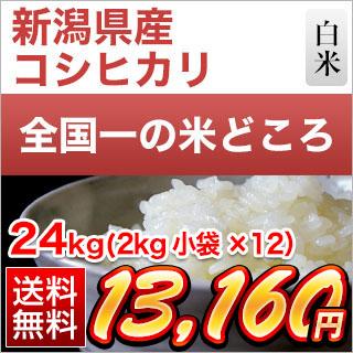 30年産 新潟県産 コシヒカリ〈特A評価〉 白米 24kg(2kg×12袋)【送料無料】