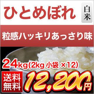 令和元年 (2019年) 岩手県産 ひとめぼれ〈特A評価〉24kg(2kg×12袋)白米【送料無料】